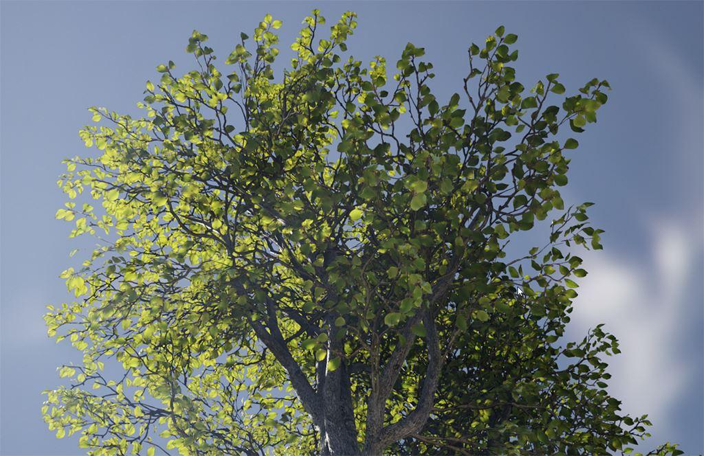 Шейдер для растительности